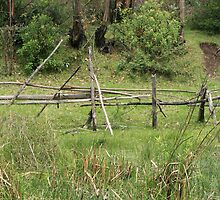 Wood Rail Fence by rhamm