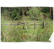 Wood Rail Fence Poster