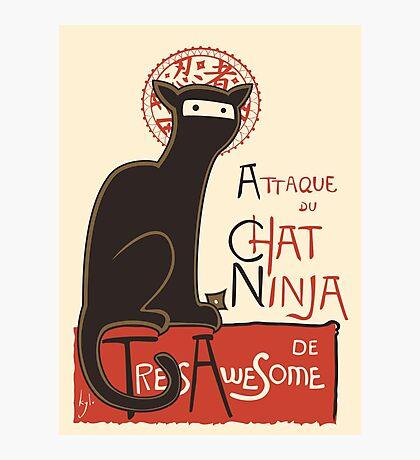 A French Ninja Cat (Le Chat Ninja) Photographic Print