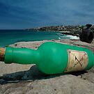 One Green Bottle @ Sculptures By The Sea by muz2142