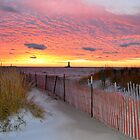 Wintery Sunset by Debbie  Maglothin