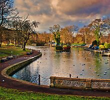 The Boating Lake by Colin Metcalf