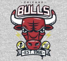 Chicago Bulls by julia315