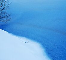 Frozen Lake, Black Forest  by Imi Koetz