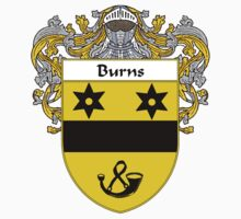 Burns Coat of Arms/Family Crest by William Martin