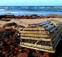 The Beached Lobster Trap by Kathleen Daley