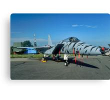 F-15C 84-021 in tiger stripes Canvas Print