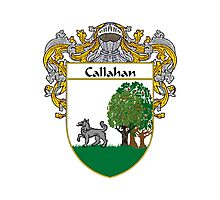 Callahan Coat of Arms/Family Crest Photographic Print