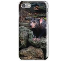 Tassie Devil  iPhone Case/Skin