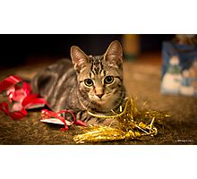 Christimas Ribbons Photographic Print