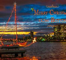 Merry Christmas from Boston by Owed To Nature