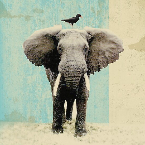 friends for life _ elephant and a black bird by Vin  Zzep