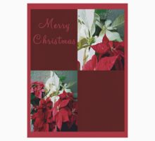 Mixed color Poinsettias 3 Merry Christmas Q10F1 Kids Clothes