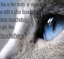 "Jesse Pinkman + Cat - ""Douchebag Math"" by NotReally"