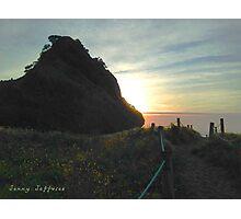 Leading up to Piha beach Photographic Print