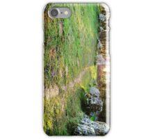Rollright Stones iPhone Case/Skin