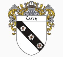 Carey Coat of Arms/Family Crest by William Martin