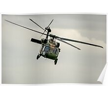 Black Hawk Swoops Poster