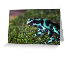 Green and Black Poison Dart Frog (Dendrobates auratus) Greeting Card
