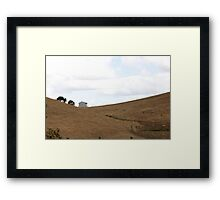 shed in the field Framed Print