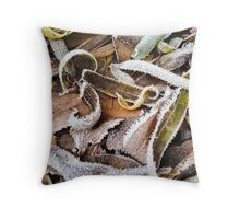 Autumn leftovers Throw Pillow