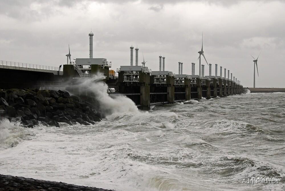 December storm by Adri  Padmos