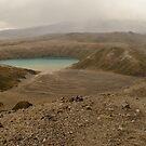 Lower Tama Lake by Werner Padarin