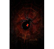 Black Widow (Signature Design) Photographic Print
