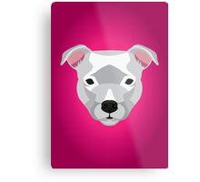 White Staffordshire Bull Terrier Metal Print