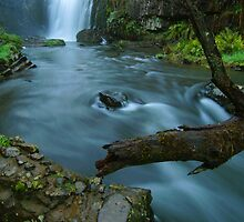 'White Coal': Guide Falls, near Burnie, north-western Tasmania by Nic Haygarth