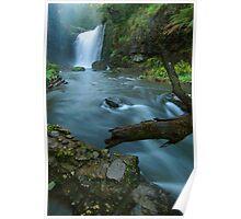 'White Coal': Guide Falls, near Burnie, north-western Tasmania Poster