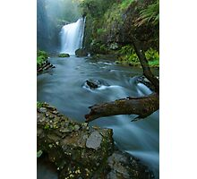 'White Coal': Guide Falls, near Burnie, north-western Tasmania Photographic Print