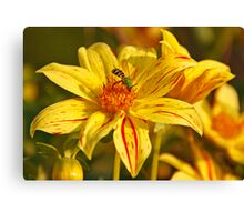 Yellow Flower Green Insect Canvas Print