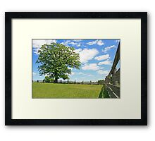 Old Tree and Fence Line Framed Print