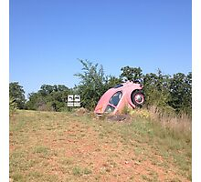 Pink Bug Nose Dive Photographic Print