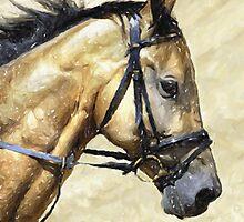 Akhal-Teke Horse Portrait by Oldetimemercan