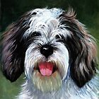 Grand Basset Griffon Vendeen by Oldetimemercan
