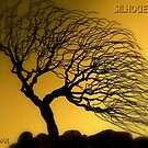 Silhouettes by artisandelimage