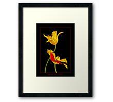 Tulip Sculpture Framed Print
