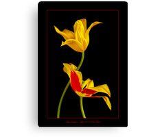 Tulip Sculpture Canvas Print