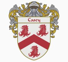 Casey Coat of Arms/Family Crest by William Martin
