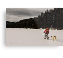 A winter ride Metal Print