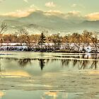 Golden Winter At Golden Ponds by Greg Summers