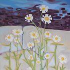 Maine Daisies by Anita Dore