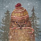 Christmas Owl  by Terry  Fan
