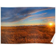 Prairie Sunburst Poster
