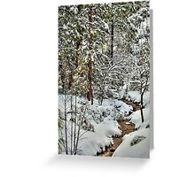 Snowy Mountain Creek Greeting Card
