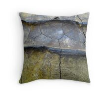 Alligator Snapping Turtle Shell Throw Pillow