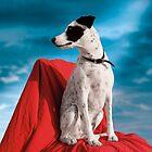Zelda: Chairdog by Alex Preiss
