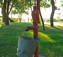 Water Pump and Bucket by Gary Horner